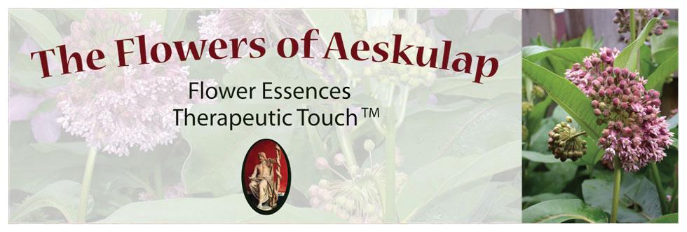 The Flowers of Aeskulap